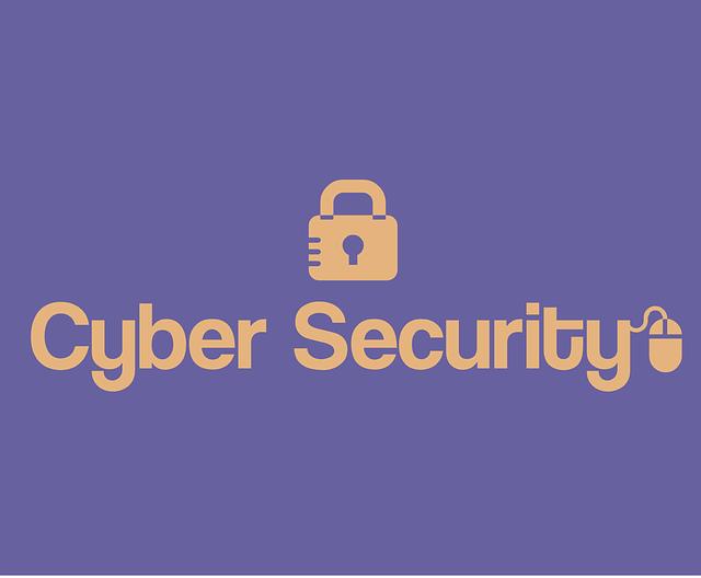 cyber bezpečnost