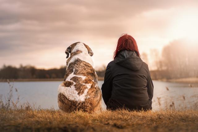 pes s dívkou u vody